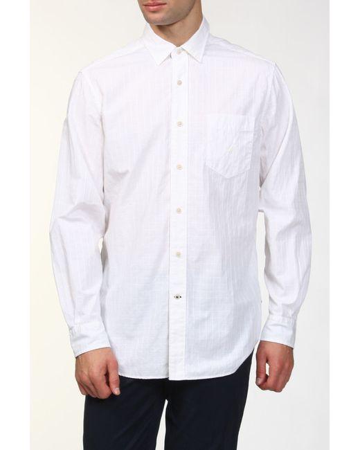 Рубашка Nautica                                                                                                              белый цвет
