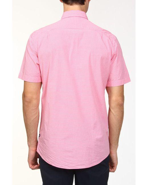 Рубашка Nautica                                                                                                              красный цвет