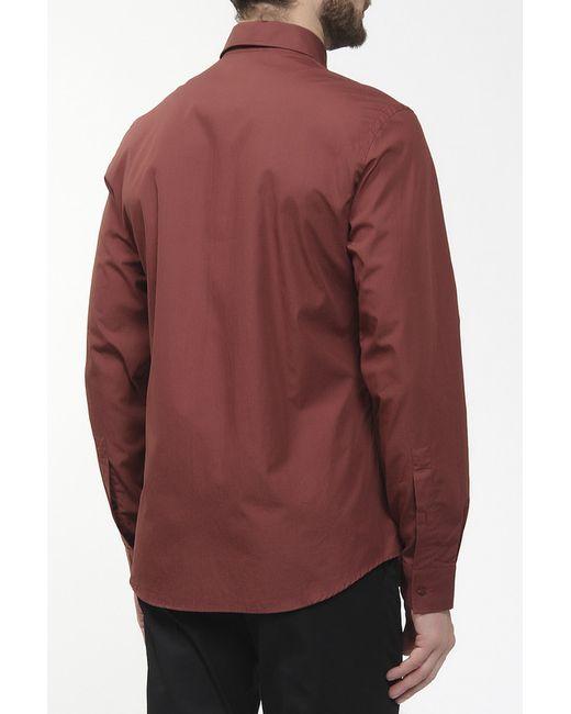 Рубашка Just Cavalli                                                                                                              коричневый цвет