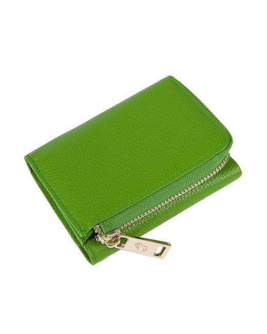 Кошелек Labbra                                                                                                              зелёный цвет