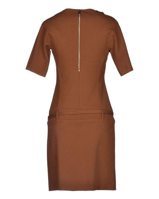 Платье Pinko Black                                                                                                              коричневый цвет