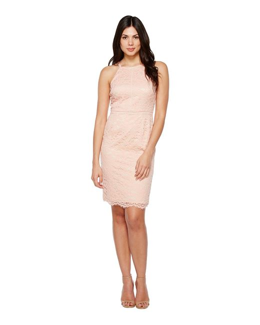 Vince Camuto | Оранжевый Lace Bodycon Dress With Trim Peach Womens