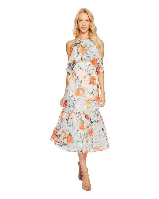 Donna Morgan | Multi Halter Neck Ruffle Midi Dress Apricot Womens