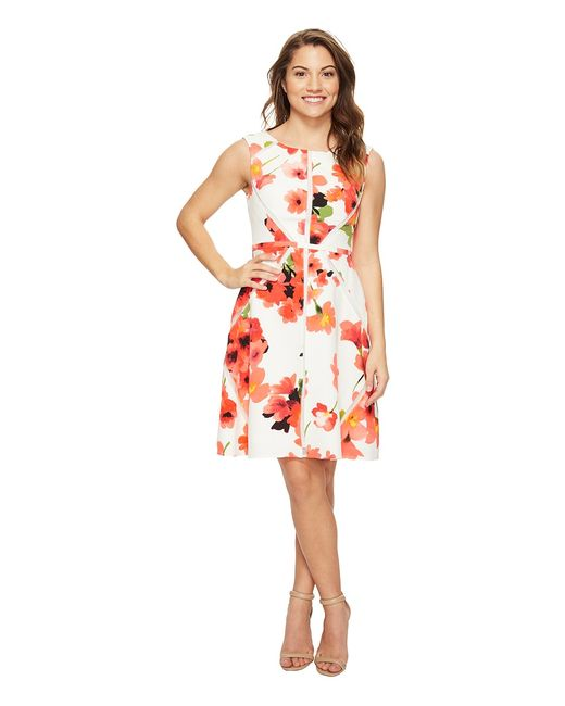 Adrianna Papell | Розовый Petite Fit And Flare Splice Dress Hibiscus