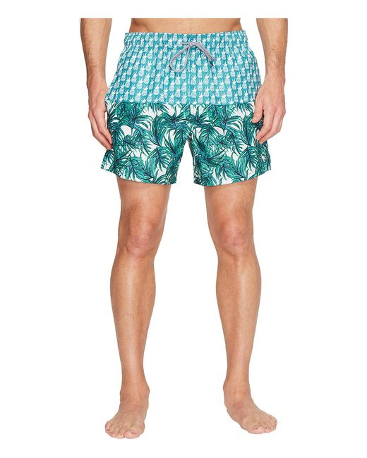 Ted Baker | Голубой Pineblo Teal Mens Swimwear