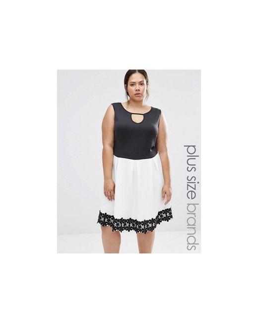 Praslin | Женское Чёрное Короткое Приталенное Платье С Отделкой Кроше Plus