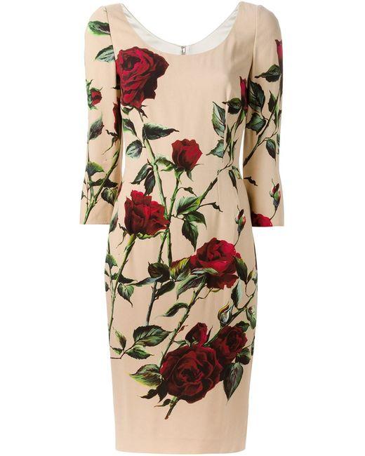 Dolce & Gabbana   Женское Многоцветный Print Fitted Dress
