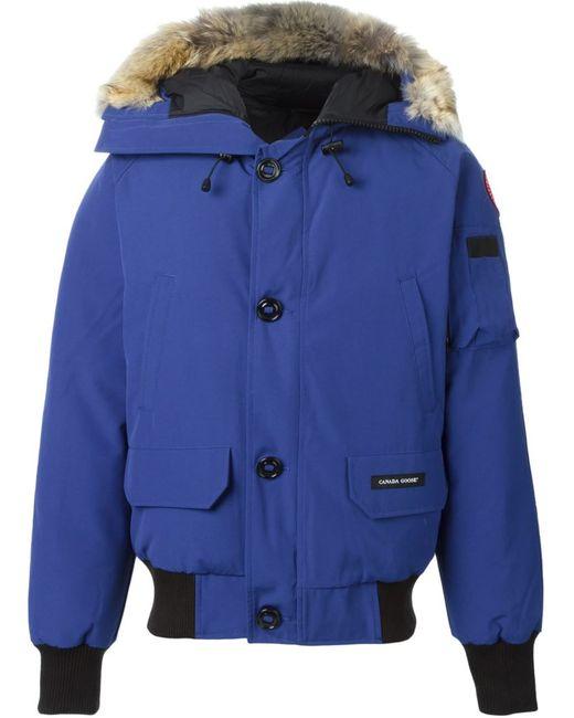 Canada Goose | Мужское Синий Fur Trim Padded Jacket