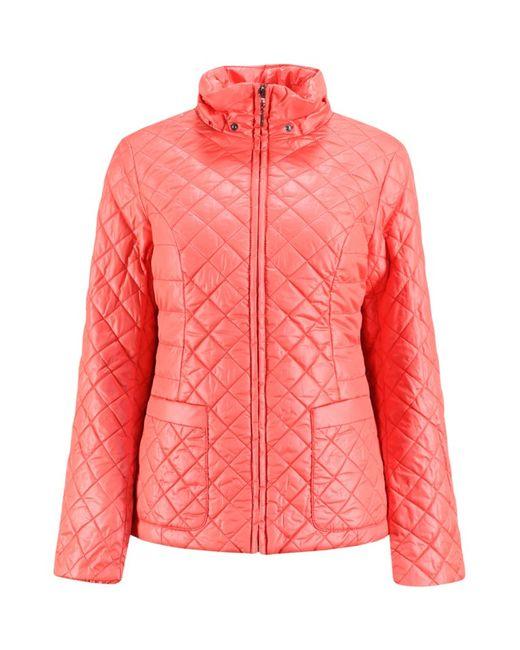 Finn Flare | Женская Paradise Куртка Женская