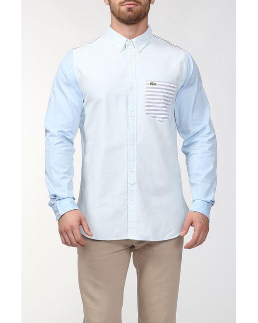 Lacoste | Мужская Голуба Рубашка