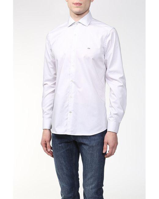 Lacoste   Мужская Белая Рубашка
