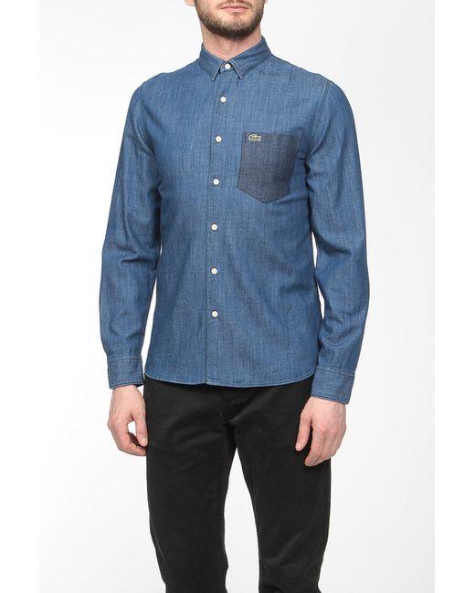Lacoste   Мужская Синяя Рубашка