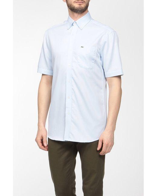 Lacoste   Мужская Голуба Рубашка