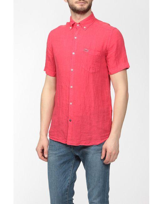 Lacoste | Мужская Красная Рубашка
