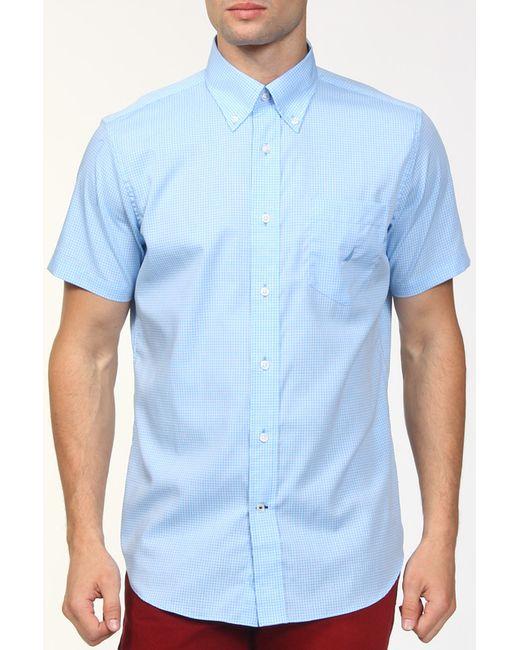 Nautica | Мужская Голуба Рубашка