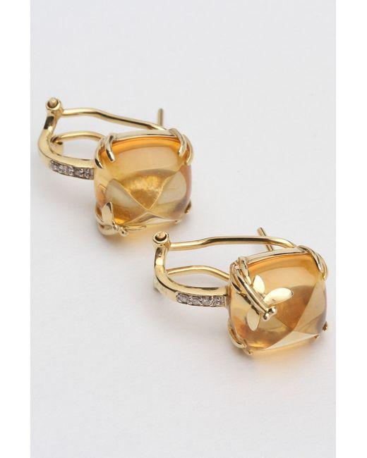 Maska | Женские Золотые Серьги