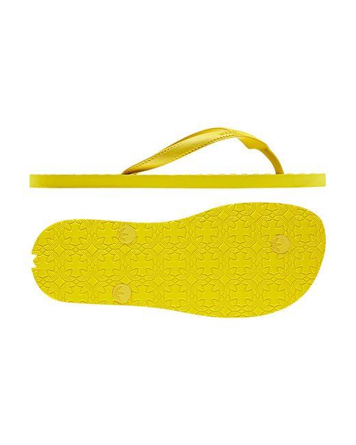 Adidas   Женские Многоцветные Пантолеты