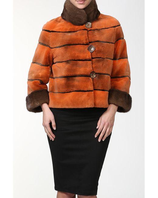 DSA   Женская Многоцветная Куртка