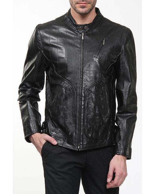 GOTTARDI | Мужская Чёрная Куртка
