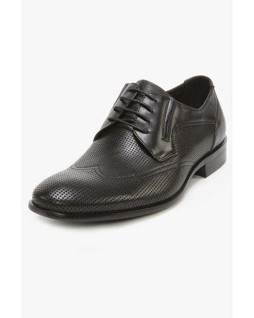 Elche | Мужские Чёрные Туфли