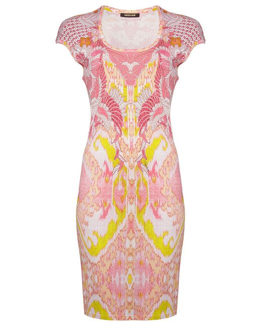 Roberto Cavalli | Женское Розовое Платье