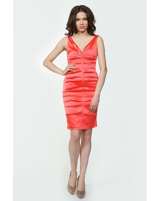 Bebe   Женское Платье