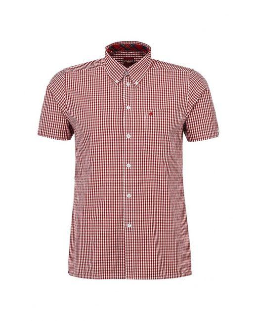 Merc | Мужская Красная Рубашка