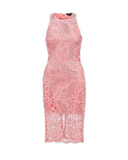 Bebe   Женское Розовое Платье