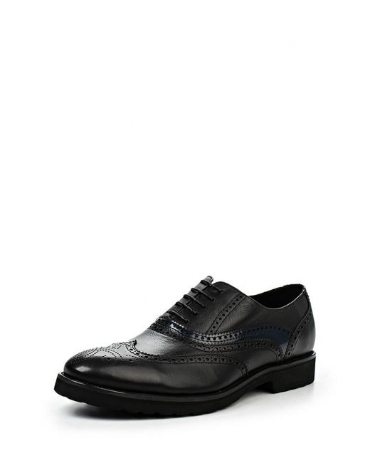 Marco Lippi | Мужские Чёрные Туфли