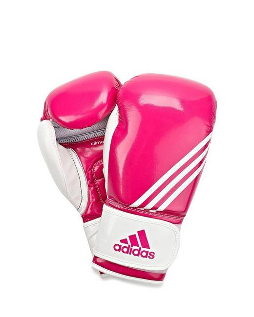 adidas Combat | Женские Розовые Перчатки Боксерские