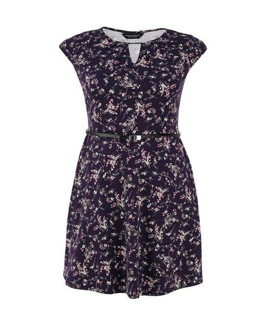 Dorothy Perkins Curve   Женское Фиолетовое Платье