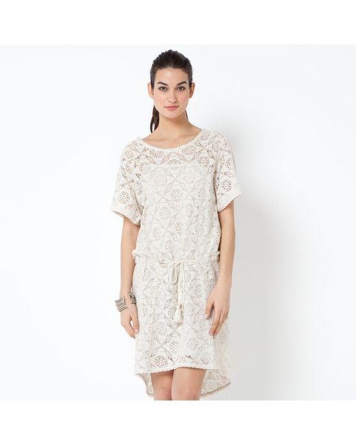 Gat Rimon | Женское Экрящее Платье Кружевное