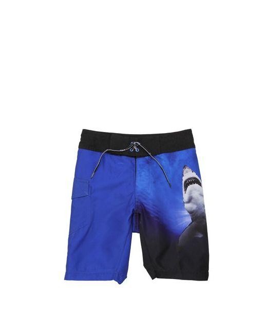 Molo | Синий Nalvaro Shark Printed Swim Shorts