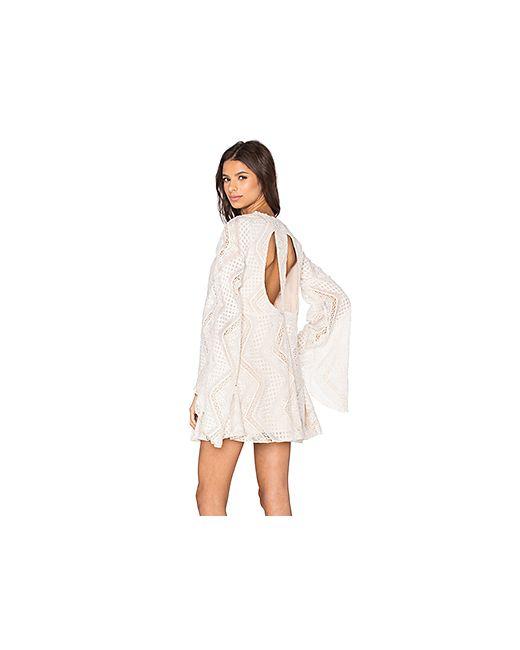 Line & Dot | Женское Кремовое Кружевное Платье Lyon