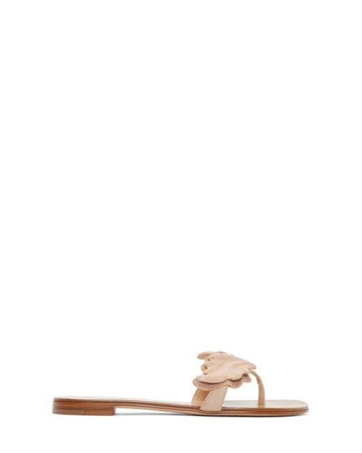 Giuseppe Zanotti Design | Fondotinta E 214 Giuseppe Zanotti Pink Wing Nuvorock Sandals