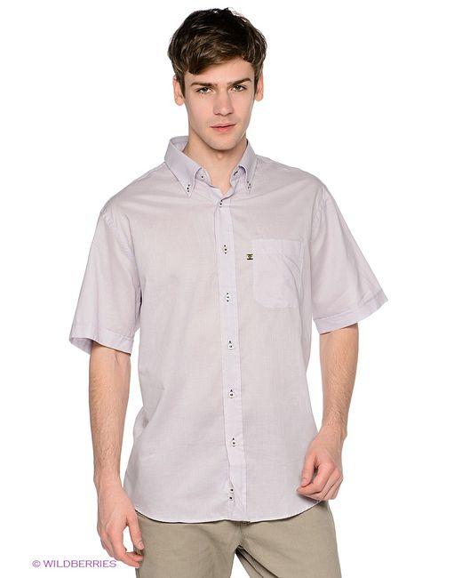 Navigare | Мужские Фиолетовые Рубашки