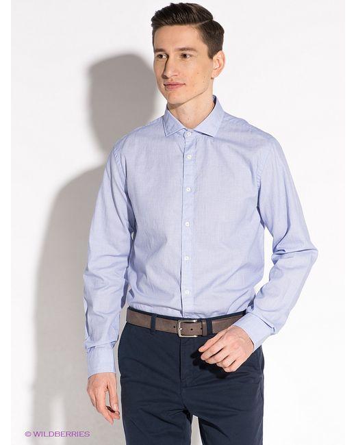 Tommy Hilfiger | Мужские Фиолетовые Рубашки