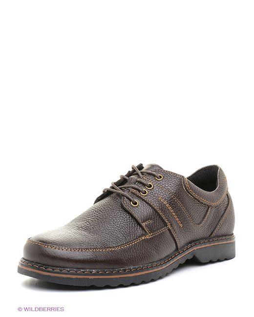 Walrus | Мужские Коричневые Ботинки