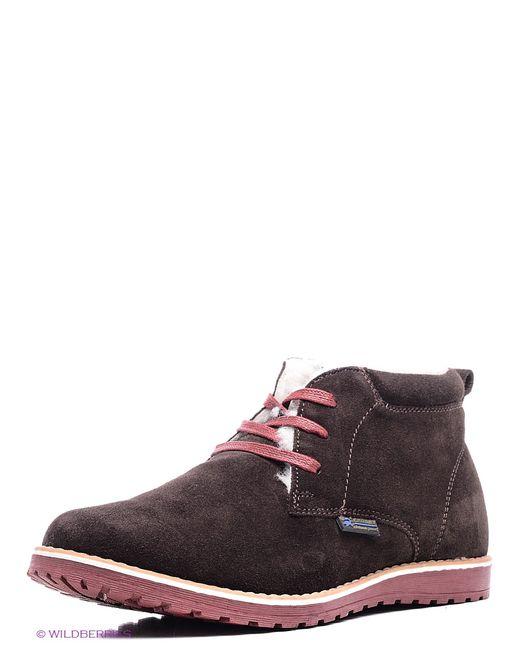 Crosby | Мужские Коричневые Ботинки