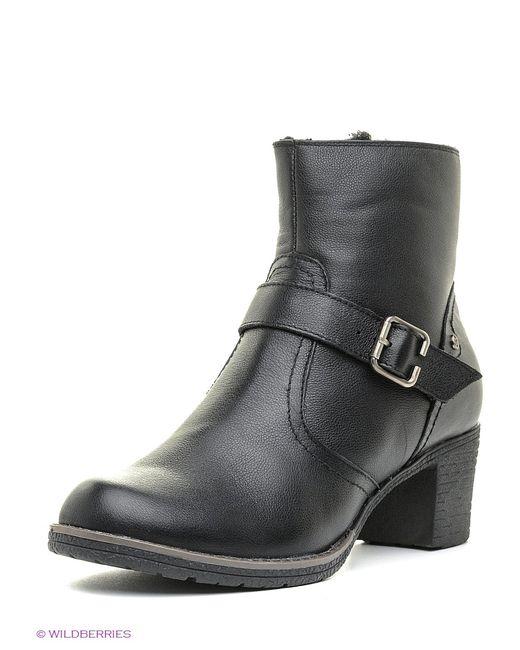 SHOIBERG | Женские Чёрные Ботинки