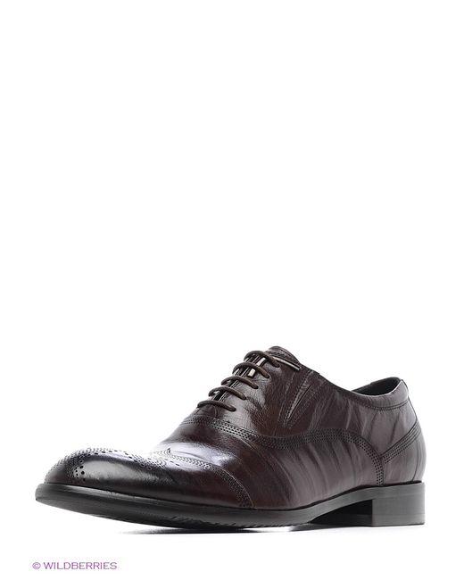 Calipso   Мужские Коричневые Ботинки