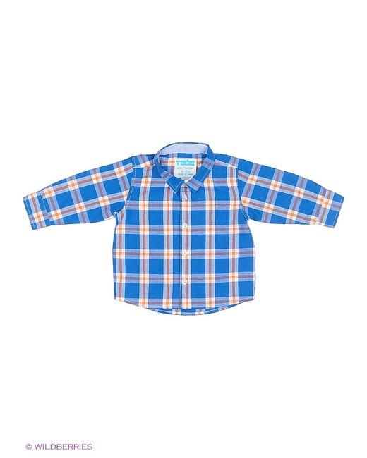 ТВОЕ | Синие Рубашки