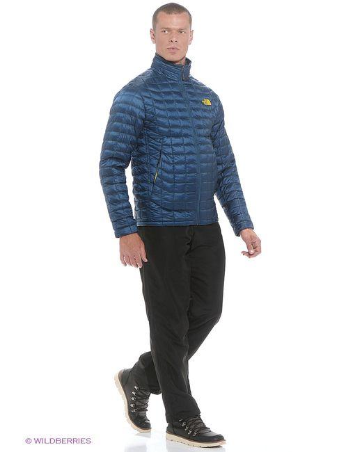 The North Face | Мужские Синие Куртки