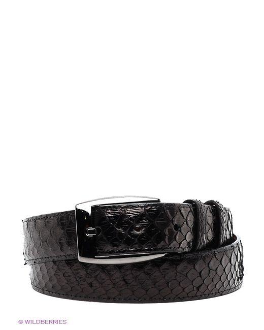 Pan American leather | Женские Чёрные Ремни
