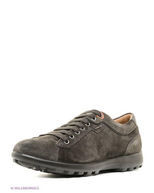 Geox | Мужские Зелёные Ботинки