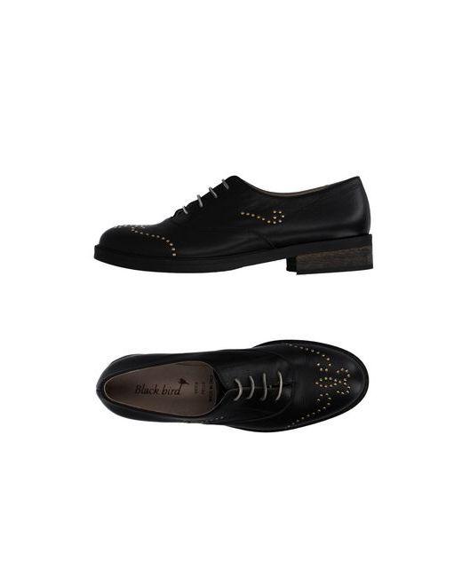 BLACK BIRD | Мужская Чёрная Обувь На Шнурках