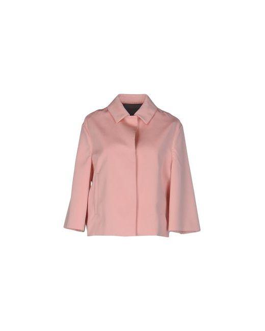 Siviglia | Розовый Пиджак