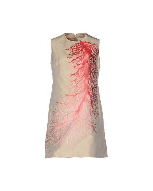 Valentino | Женское Бежевое Короткое Платье
