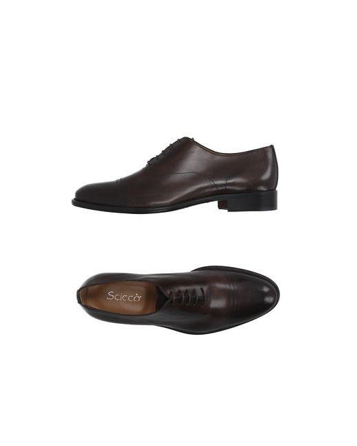 SCICCO | Мужская Какао Обувь На Шнурках