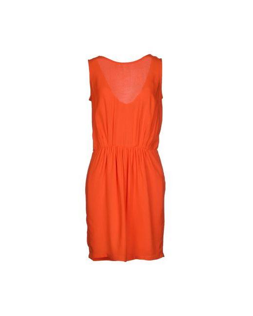 Sessun | Женское Короткое Платье